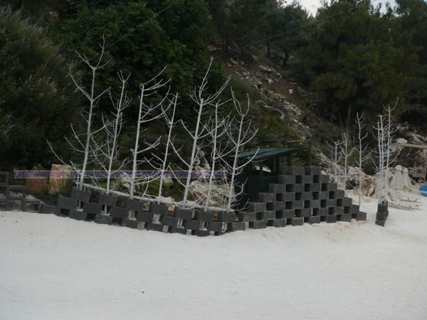 Marble Beach Thassos Island Greece (5)